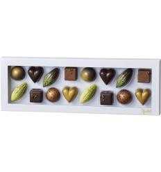 Xocolatl selection - 16 fyldte chokolade-dessertstykker mix