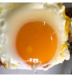 TILBUD: 15 stk. ØKOLOGISKE græs-æg fra Kokærgård