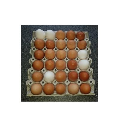 30 stk. æg fra friland, Rettrup Kær Friland